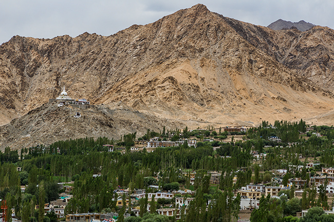 View from the palace in Leh