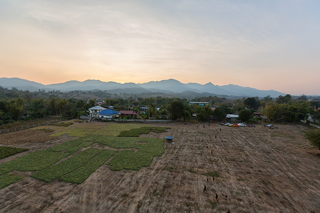 Hot air balloon over the garlic fields of Pai