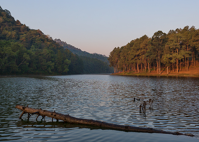 Pang-Ung Lake in the morning