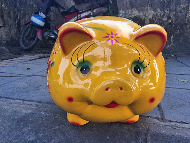 This pig is for sale!