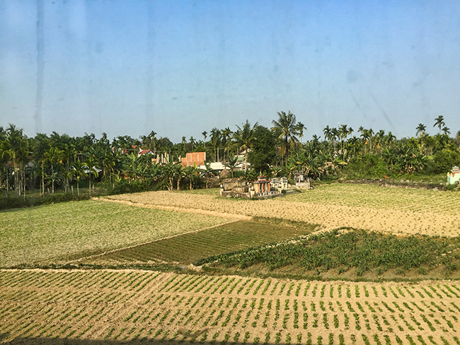 Fields somewhere in Vietnam