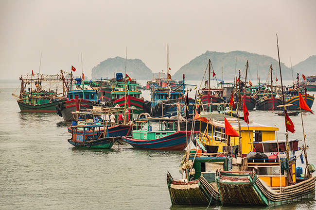Boats in the harbour of Cat Ba